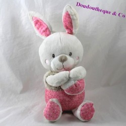 Plush musical rabbit words children's pink gray ball 25 cm