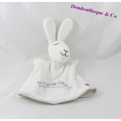 Doudou puppet rabbit DPAM my little white 21 cm theater