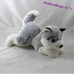 Peluche chien husky CREATIONS DANI gris blanc 24 cm