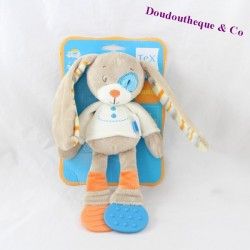 Doudou rabbit TEX BABY dog cockroach blue ring dentition 24 cm