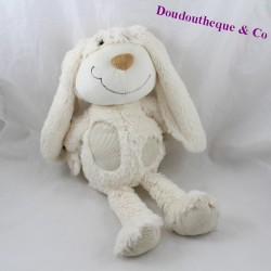 MoZAIC white rabbit cub with 40 cm long hairs