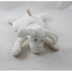 Doudou Fifi chien DIMPEL blanc beige couché 23 cm