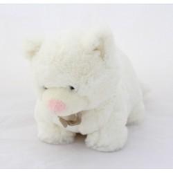 White FUR 4-legged 4-legged cat Doudou HISTORY