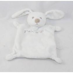 Doudou flat rabbit GRAIN BLE white brown nose 22 cm