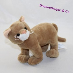 M6 INTERACTIONS brown cat cub standing