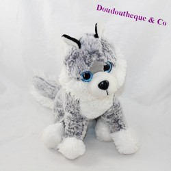 Husky dog big white big blue eyes sitting 28 cm