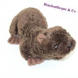 ANIMALS DANI mongoose otter