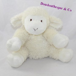 White beige sheep cub sitting