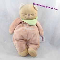 BeNGY cat cub Patou salmon green scarf