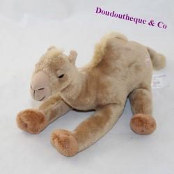 Dromedary stuffed animal JGTC Dubai brown