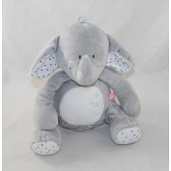Plush Anna elephant...