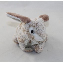 Doudou rabbit HISTORY OF...