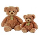 Bear Histoire d'Ours